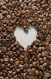 Coffebeans on Neutral Gray Background. Dark Roast Coffee. Dark Roast Coffee on neutral Background Stock Images