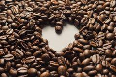 Coffebeans su Gray Background neutrale Caffè scuro dell'arrosto Fotografie Stock