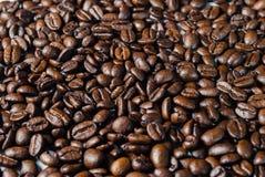 Coffebeans sur Gray Background neutre Café foncé de rôti Photos libres de droits