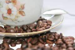 Coffee. Cup of hot coffee Royalty Free Stock Photos