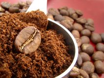 Coffee. Bean stock images
