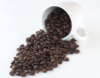 Coffee. Beans in a  cup against a white background royalty free stock images