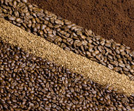 Coffee. Background made of the coffee Stock Photos