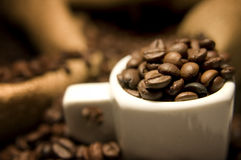 Coffee. Beans inside an espresso cup, blured background for depth of field royalty free stock photos