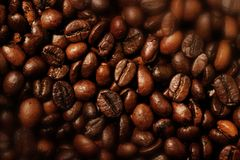 Coffee. Image of rich coffee beans Stock Image