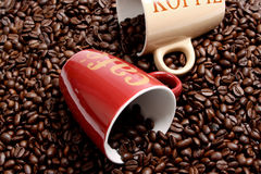 Coffee. Beans and a  cup Royalty Free Stock Images