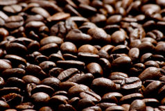 Coffee. Beans as a background Stock Photos
