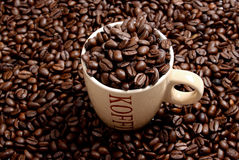 Coffee. Beans and a  cup Royalty Free Stock Photo