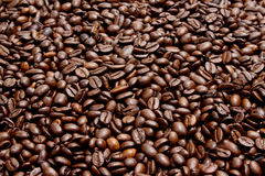 Coffee. Beans as a background Stock Image
