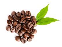 Free Coffee Stock Image - 15587501