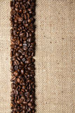 Coffee. Flavor of freshly roasted coffee beans Stock Image