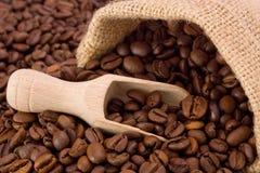 Coffee. Beans in burlap sack Stock Photos