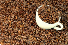 Coffee. Beans with a cup Royalty Free Stock Image