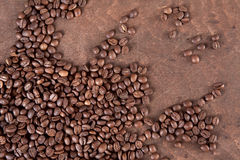 Coffee. Beans on a dark background Stock Photography