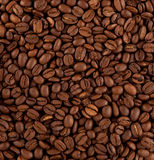 Coffee. Numerous coffee beans as background Stock Images