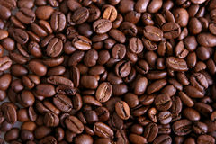 Coffee. A picture of a lot of coffee beans Stock Image