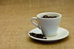 Free Coffee Stock Photography - 22104382