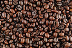 Coffee. Close up of coffee bean background royalty free stock image