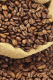 Coffee. Beans on a burlap royalty free stock photography