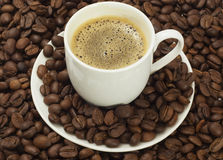 Coffee. Cup with coffee, costing on coffee grain stock photo