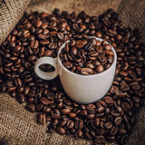Coffee. Warm cup of coffee on brown background stock image