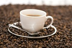Coffee. Coffe beans in cup on coffee background Stock Photography