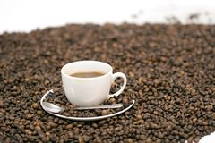 Coffee. Coffe beans in cup on coffee background Royalty Free Stock Photo