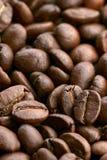 Coffee. Framefull of coffee beans - closeup Royalty Free Stock Photos