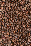 Coffee. Framefull of coffee beans - background Stock Images