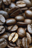 Coffee. Beans royalty free stock photography
