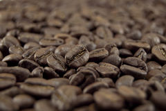 Coffee. The black coffee bean close-up royalty free stock image