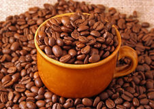 Coffee. A cup with coffee beans Stock Photography