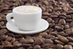Coffee. Beans in white cup Stock Image