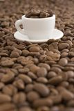 Coffee. Beans in white cup Stock Photography