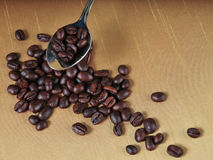 Coffee-534 Fotografia de Stock Royalty Free