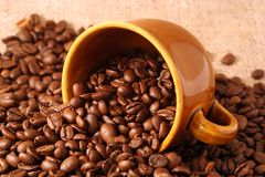 Coffee. Cup and coffee beans on beige texture Royalty Free Stock Images