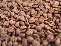 Coffee 7. Coffee beans background stock photos