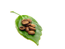 Coffee. Allegory about live coffee - coffee beans and leaf Royalty Free Stock Image
