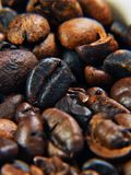 Coffee. Just coffee beans color detail Royalty Free Stock Image