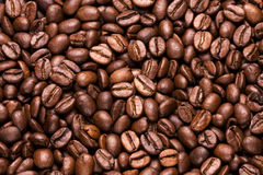 Coffee. Beans  (-beans background Royalty Free Stock Photos
