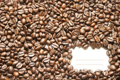 Coffee. Coffee bean close up isolated against white background Royalty Free Stock Photo