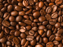Coffee background. Roasted coffee beans assorted background Stock Photos