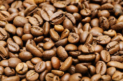 Coffee background. A background of roasted coffee beans Stock Images