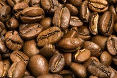 Coffee background. Closeup shots of many coffee beans. Great for background stock photo
