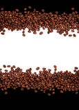 Coffee background. Coffee beans on black and white background royalty free stock images