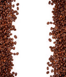 Coffee background. Coffee beans on black and white background Stock Photography