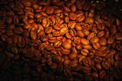 Coffee Background. Toasted Coffee Beans Stock Image