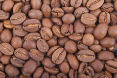 Coffee background. Royalty Free Stock Images