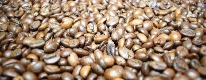 Coffee background coffee beans. Coffee background cheerfulness morning espresso cappuccino mood caffeine coffee beans brown texture deliciously many grains Royalty Free Stock Images