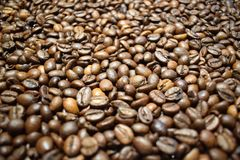 Coffee background coffee beans. Coffee background cheerfulness morning espresso cappuccino mood caffeine coffee beans brown texture deliciously many grains Royalty Free Stock Photos